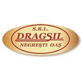 Dragsil SRL