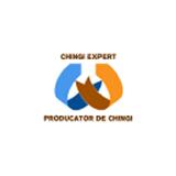 CHINGI EXPERT SRL