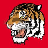 Tiger Amira SRL