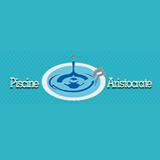 PISCINE ARISTOCRATE SRL