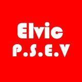 ELVIC P.S.E.V. SRL